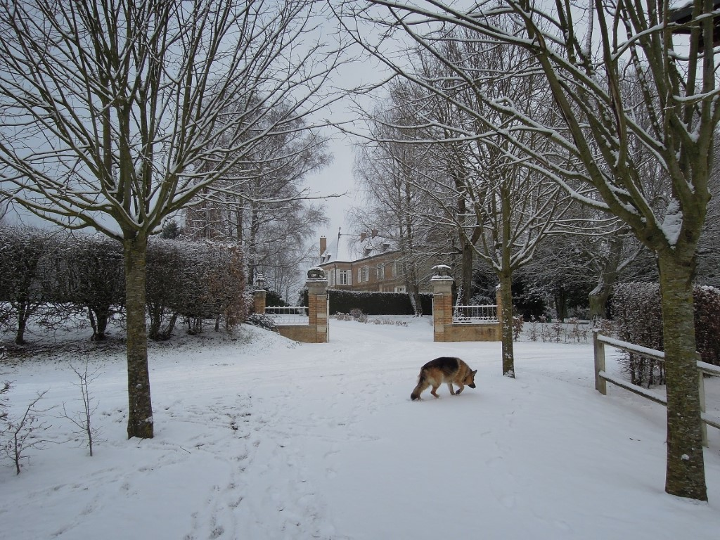 Villers castle in winter, 24-2-013 kopie
